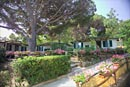 The cottages: Camping Acquaviva - Island of Elba
