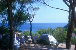 Acquaviva Village Camping: vacation in tent - Island of Elba