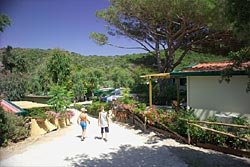 Acquaviva Village Camping: the camping - Island of Elba