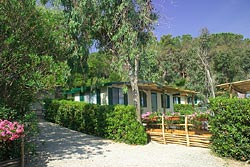 Cottages: Camping Village Acquaviva - Øen Elba